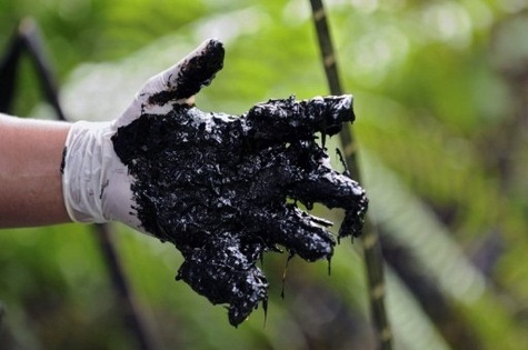 Le-petrolier-Chevron-condamne-a-une-amende-record-pour-pollution_article_main
